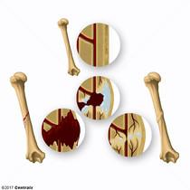 Cal osseux